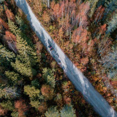 husky cart ride autumn rovaniemi parpalandia